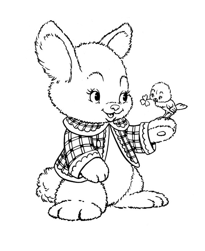 Cute Peter Rabbit And Bird Coloring Pages