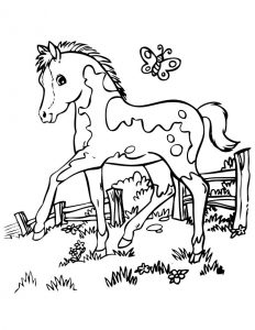 Cute pony coloring page free
