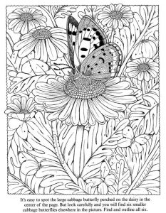 Daisy butterfly flower coloring page