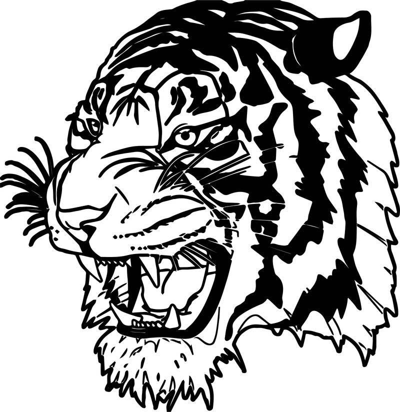 Dangerous Tiger Face Coloring Page - Coloring Sheets