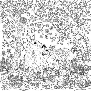 Deer fall coloring pages for adults