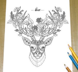 Deer zentangle coloring page