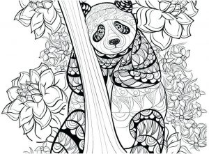 Detailed panda coloring page for adults
