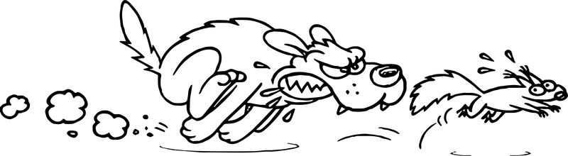 Dog And Secret Squirrel Cartoon Catch Coloring Page
