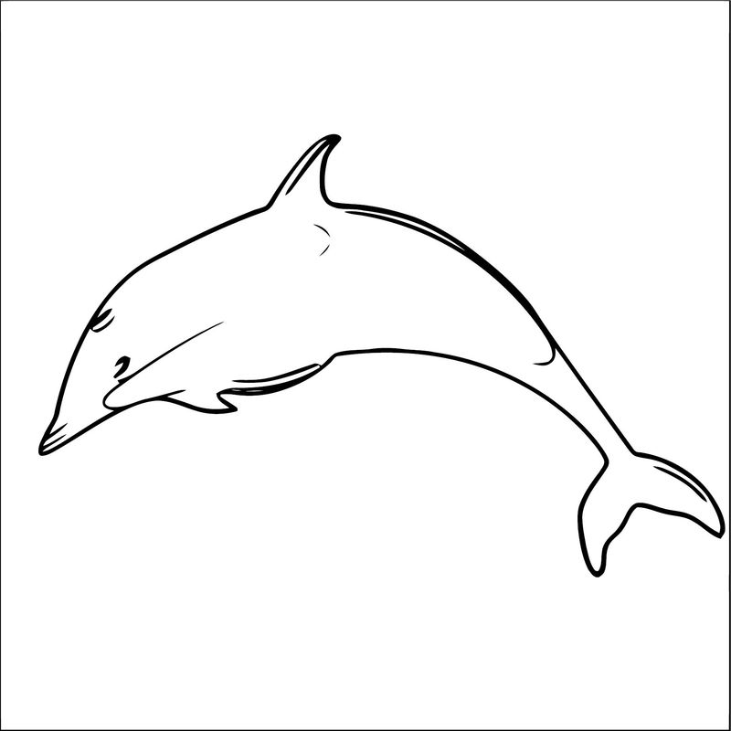 Dolphin Coloring Page 048