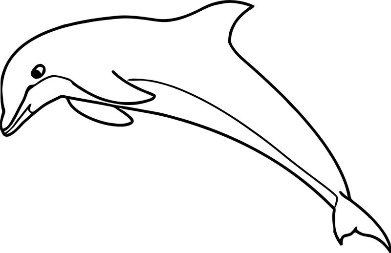 Dolphin Coloring Page 110