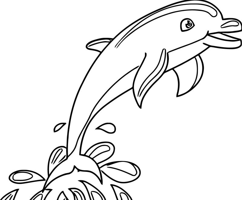 Dolphin Coloring Page 132