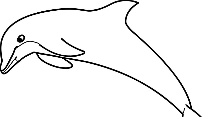 Dolphin Coloring Page 138