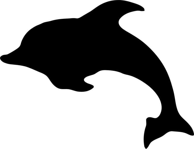 Dolphin Coloring Page 147