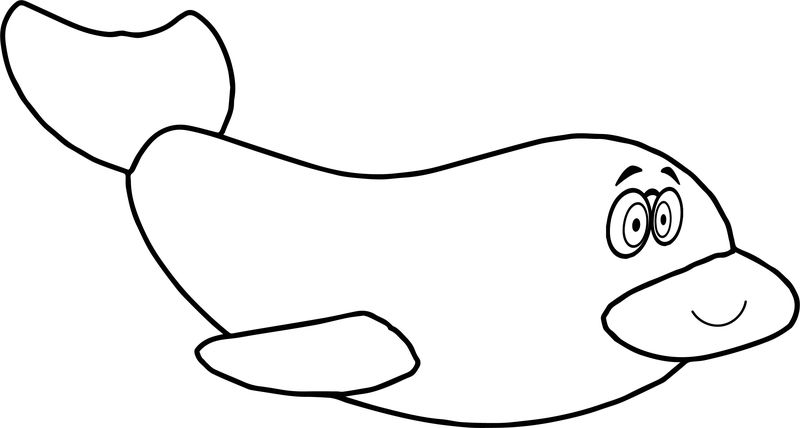 Dolphin Coloring Page For Children Free