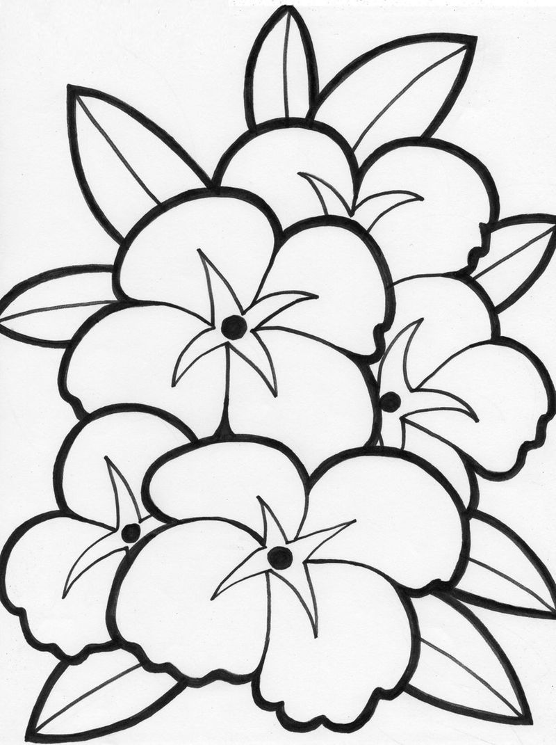Download Flower Coloring Pages 001