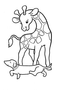 Drawing sheets for colouring animals