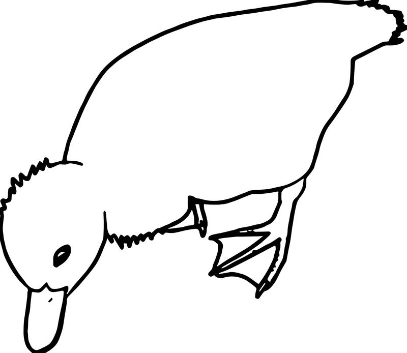 Duck Eating Food Coloring Page