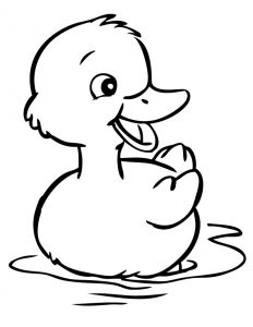 Duckling animal coloring pages