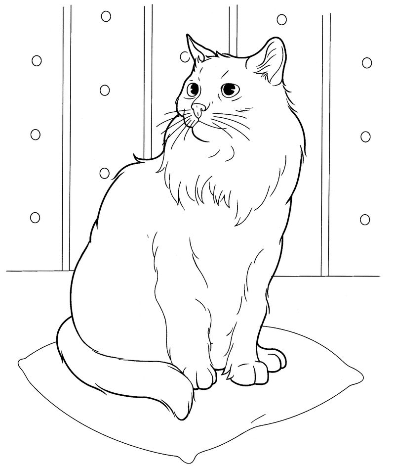 Easy Cat Coloring Pages For Adults