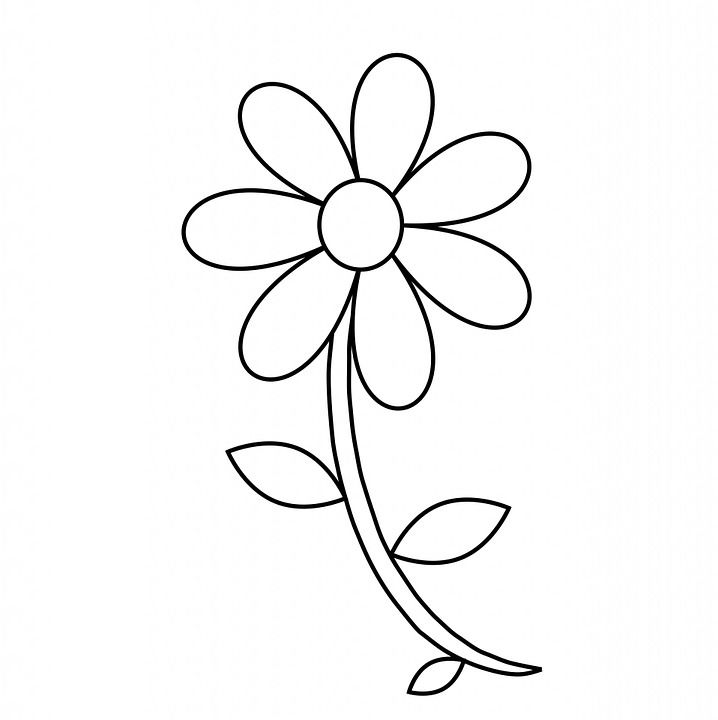 Easy Coloring Page Flower 1