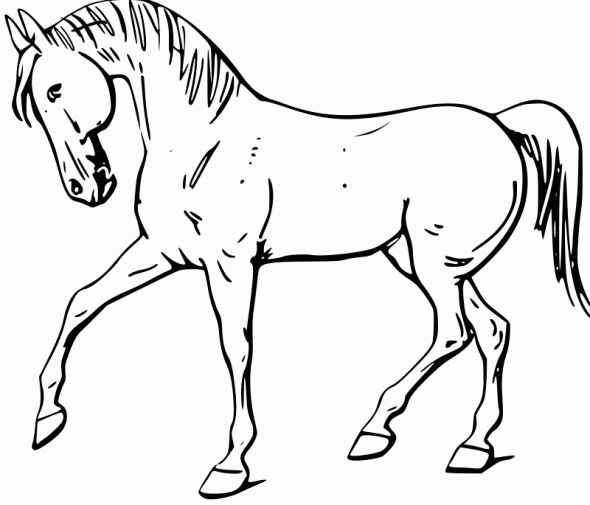 Easy Simple Horse Coloring Page
