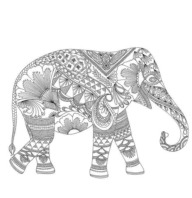 Elephant Coloring Pages For Adult