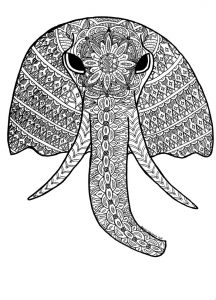 Elephant coloring pages for adults free download