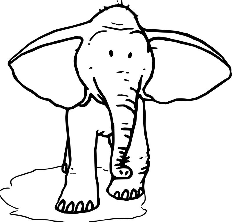 Elephant Ear Coloring Page