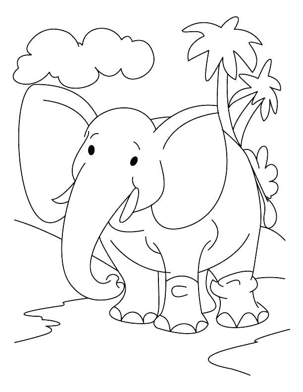 Elephant Jungle Coloring Pages 1