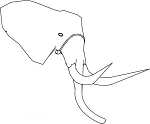 Elephant perspective head coloring page