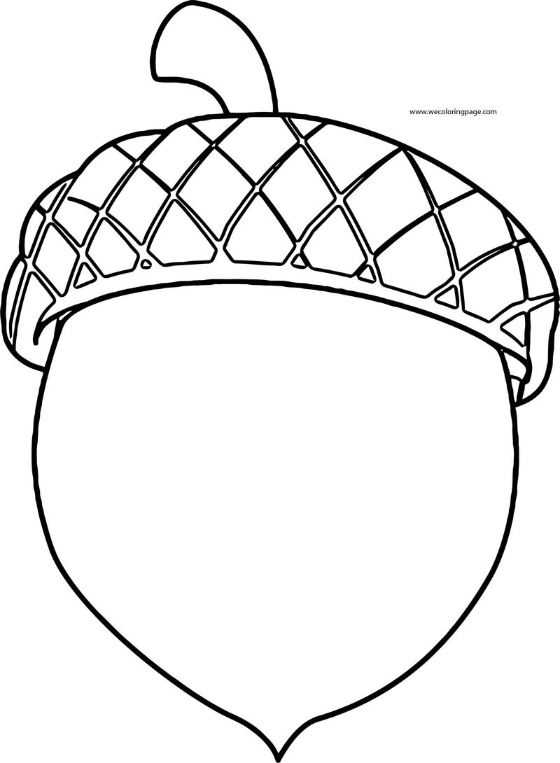 Fall Chestnut Coloring Page