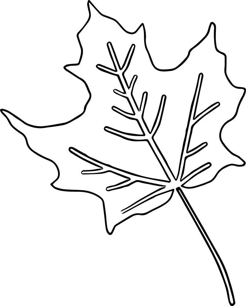 Fall Coloring Page Coloring Page