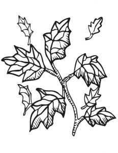 Fall coloring pages 2 001