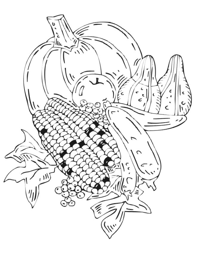 Fall Harvest Coloring Pages Free