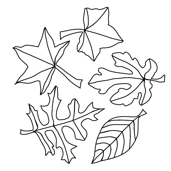 Fall Leaves Coloring Page 001