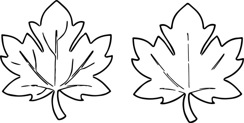 Fall Leaves Images For Fall Leaf Coloring Page