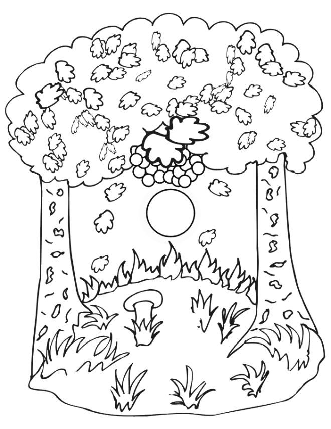 Fall Nature Scene Coloring Page