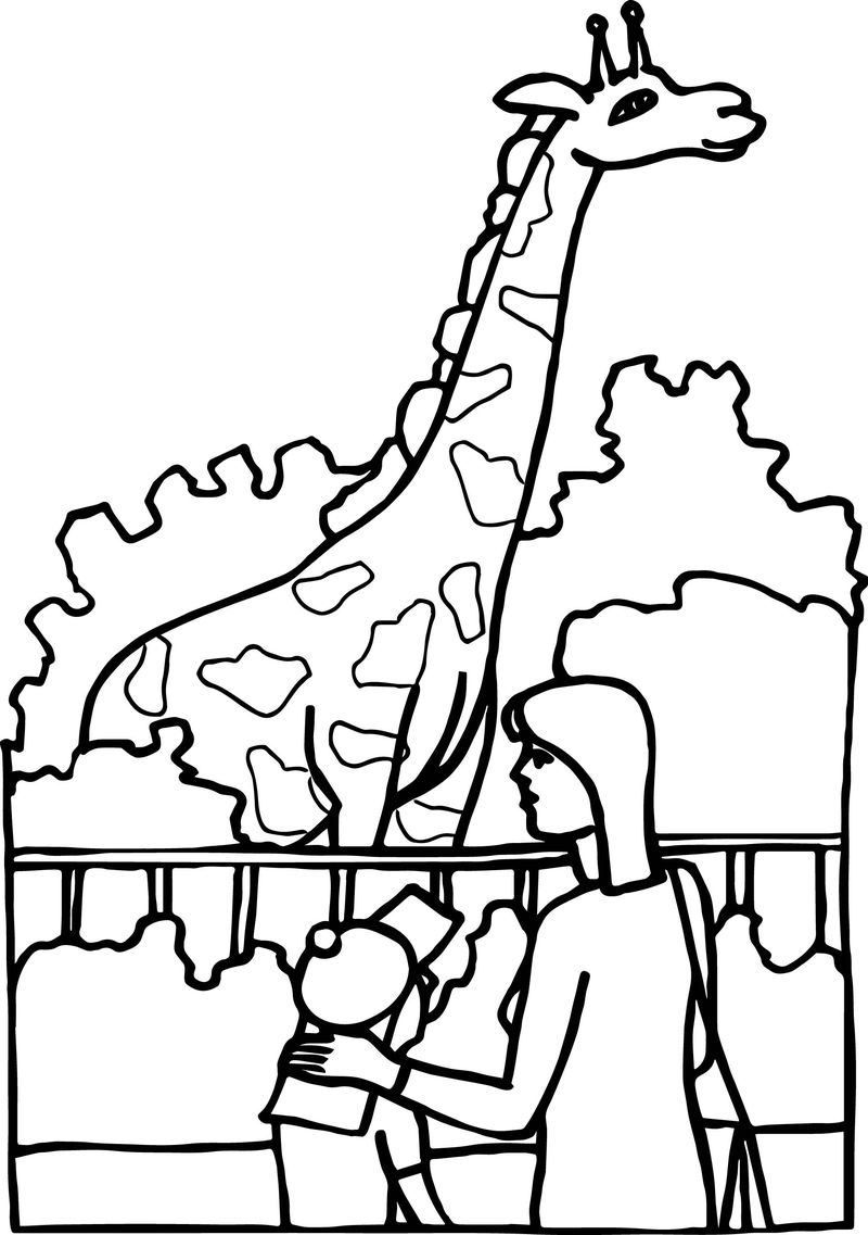 Family Zoo Look Giraffe Coloring Page