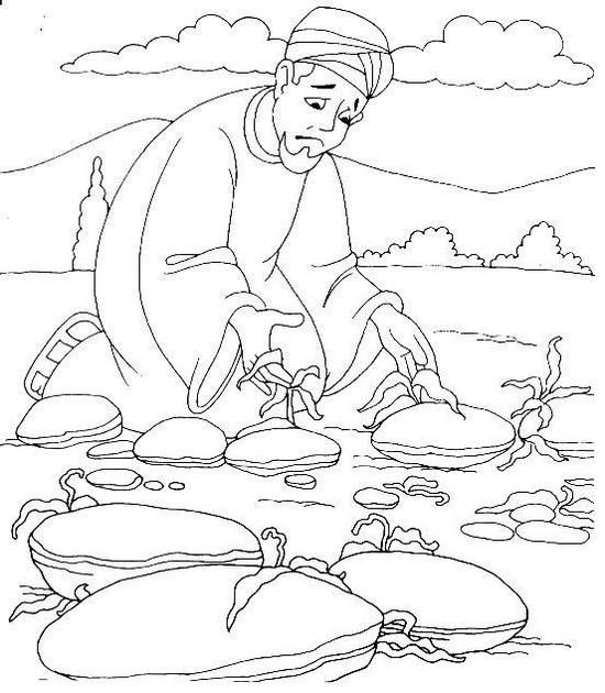 Fantastic Parable Of The Sower Coloring Pages