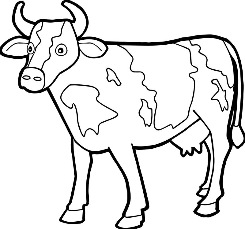 Farm Animal Staying Cow Coloring Page