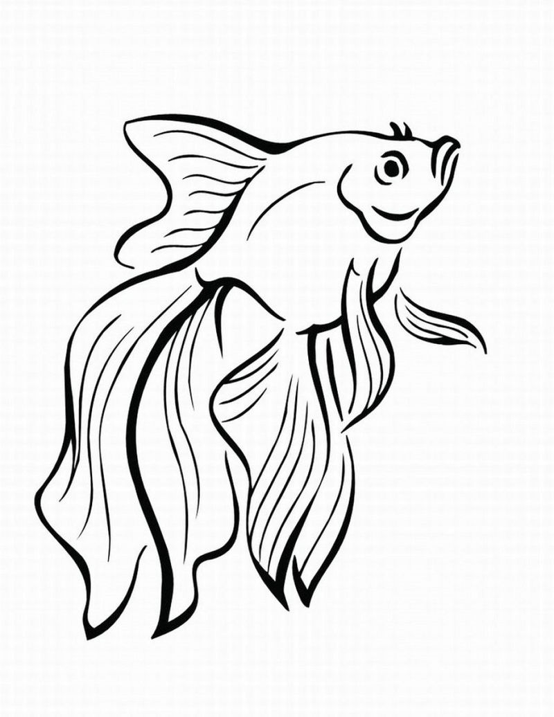Fish Color Pages Printable