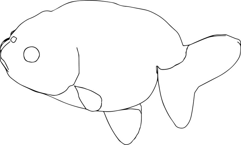 Fish1 Coloring Page