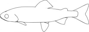 Fish33 coloring page