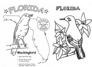 Florida mockingbird symbol coloring page