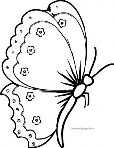 Flower butterfly coloring page