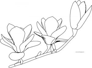 Flower coloring page 07