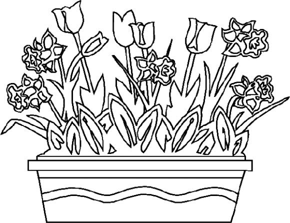 Flower Coloring Pages Free Download