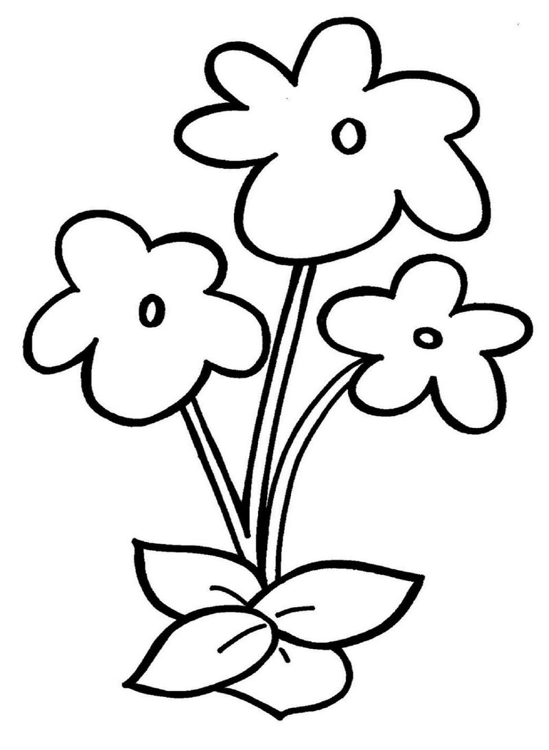 Flower Template For Preschool