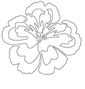 Flower templates to print paper 001