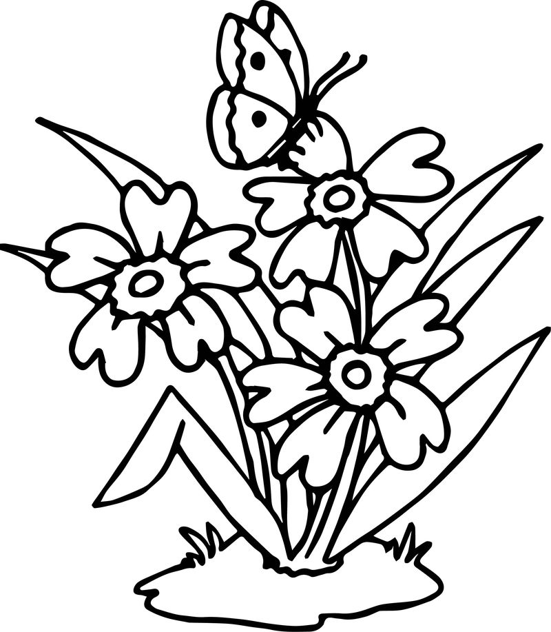Flowers Butterfly Coloring Page