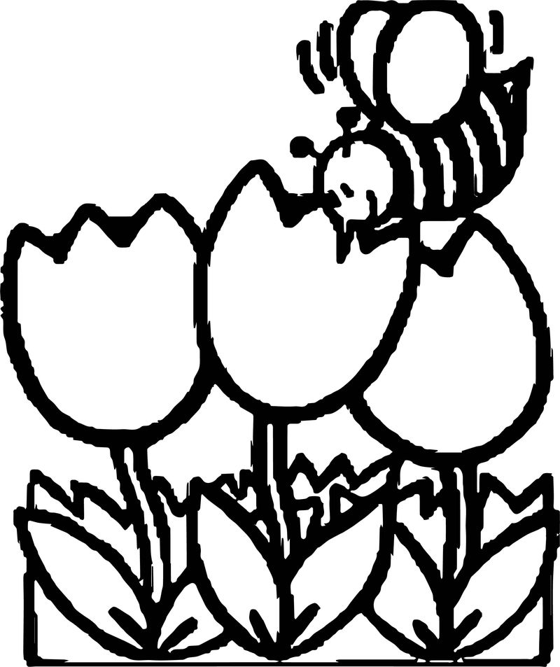 Free pictures net spring coloring page