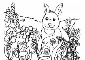 Free printable spring coloring pages 001