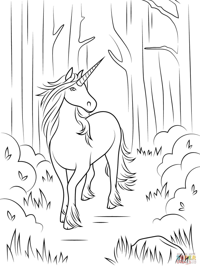 Free Unicorn Coloring Pages For Adults