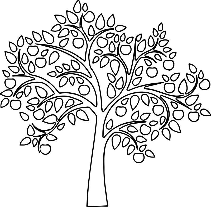 Fresh Apple Tree Coloring Page